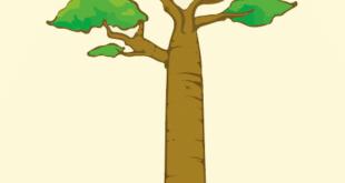 Umorismo sottile come un baobab logo