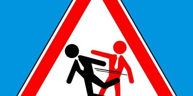 educazione cinica logo